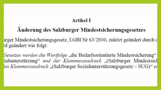 Wohin führt die Salzburger Ausführung des Sozialhilfe-Grundsatzgesetzes?